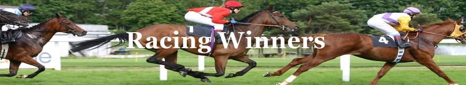 Racing Winners | Racing Winners System